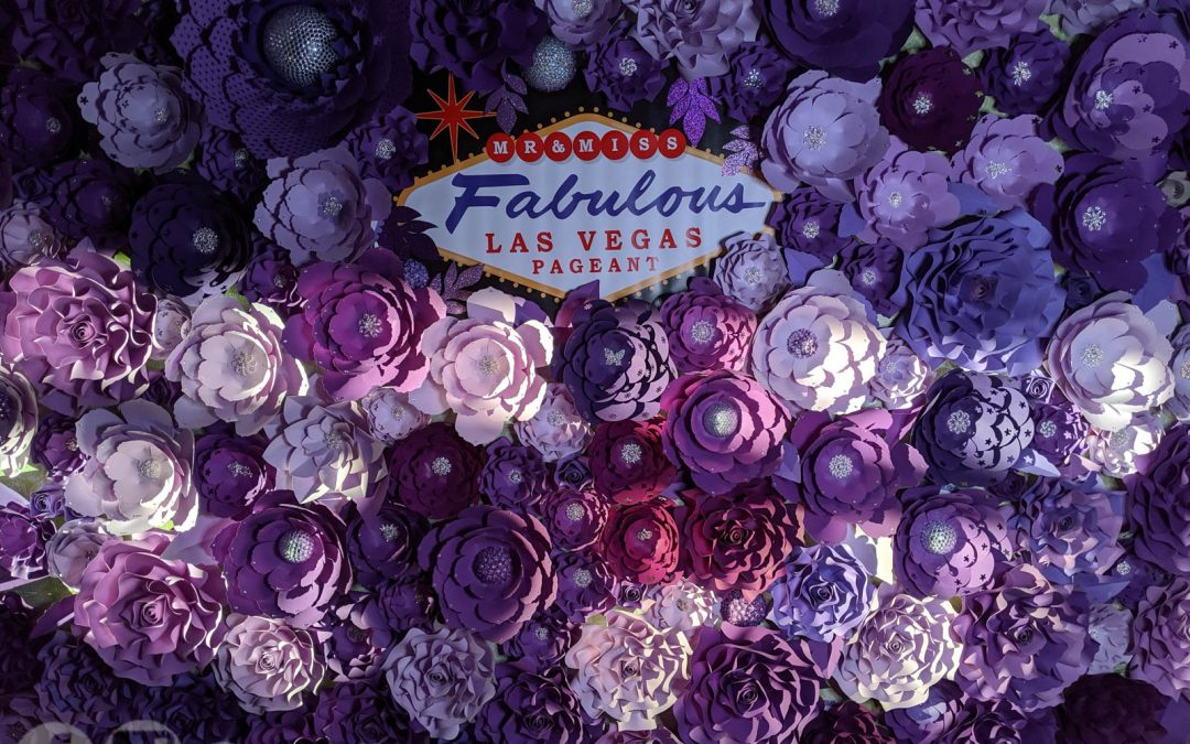 Miss Fabulous 2019 Paper Flower Wall Photo Gallery